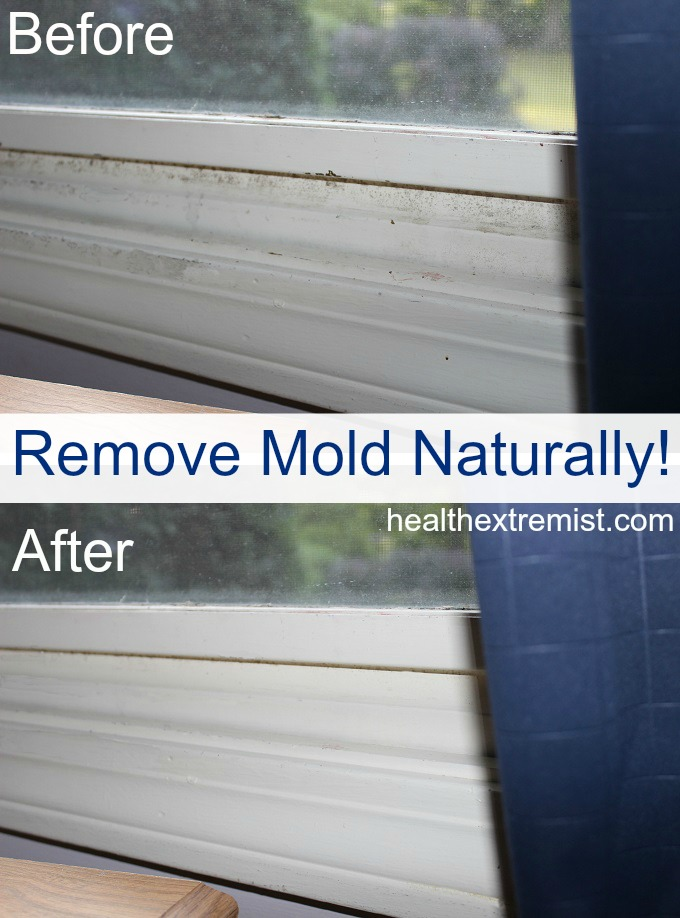 How to get rid of mold naturally 3 ways - Natural ways remove mold ...