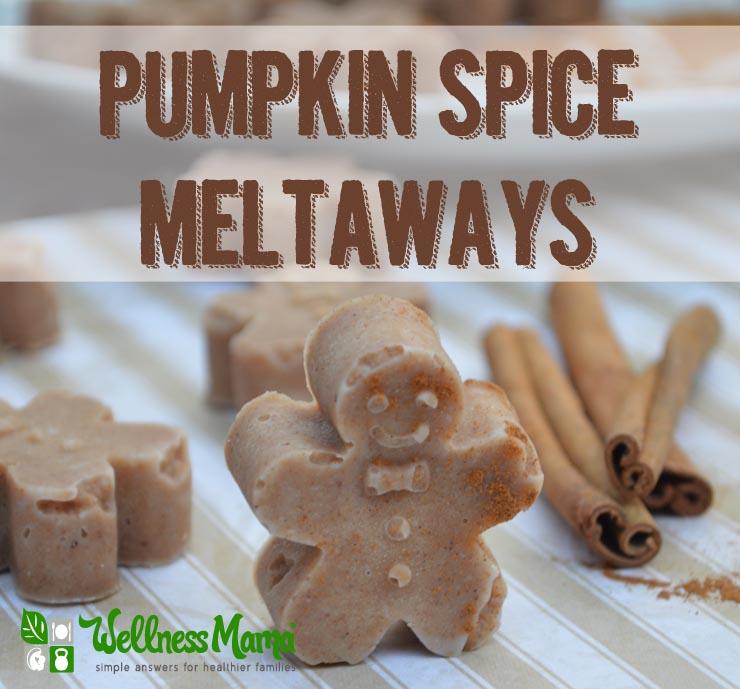 Pumpkin Spice Meltaways Recipe - Wellness Mama